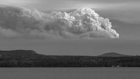 Fumée du feu de forêt Photo stock