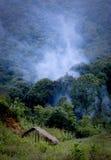 Fumée du feu de forêt dans la forêt Images stock
