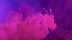 Fume motion magenta pink steam flow purple blue