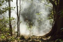Fumerolle chez Rincon de la Vieja Volcano. Image stock