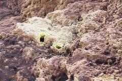 Fumerolles à l'intérieur d'un cratère de volcan images stock