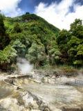 Fumerolles en île de S. Miguel Photo libre de droits