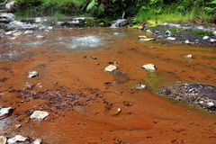 Fumerolles, Hot Springs en Caldeira Velha sur l'île de San Miguel Photos stock