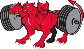 Fumetto dalla testa multi del bilanciere di Powerlifting del Hellhound del cane di Cerberus illustrazione di stock