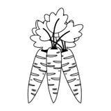 Fumetto degli ortaggi freschi delle carote in bianco e nero royalty illustrazione gratis
