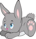 Fumetto del coniglio, vettore Immagine Stock
