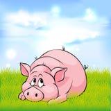 Fumetto del maiale che mette su erba verde - vettore Fotografia Stock Libera da Diritti