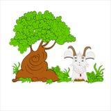 Fumetto dell'illustrazione della capra Fotografia Stock