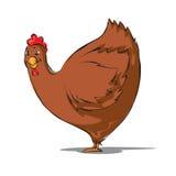 Fumetto della gallina Fotografia Stock