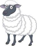 Fumetto delle pecore Immagini Stock Libere da Diritti
