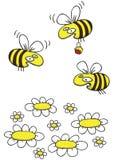 Fumetto disegnato a mano delle margherite e di Honey Bees Fotografie Stock Libere da Diritti