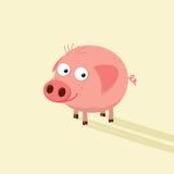 Fumetto divertente del maiale con il fronte sciocco Fotografie Stock Libere da Diritti