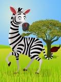 Fumetto divertente della zebra Fotografia Stock Libera da Diritti