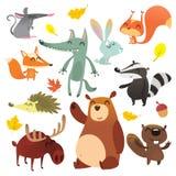 Fumetto Forest Animals Insieme sveglio degli animali del fumetto selvaggio illustrazione vettoriale