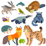 Fumetto Forest Animals Set Illustrazione Vettoriale