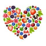 Fumetto Forest Berries Concept in buona salute fresco illustrazione vettoriale