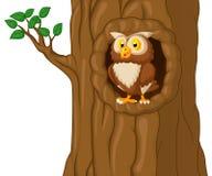Fumetto Owl In Tree Immagine Stock