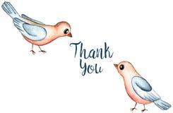 Fumetto Robin Redbreast Birds Watercolor Illustration isolato su fondo bianco Grazie cardare Illustrazione di Stock