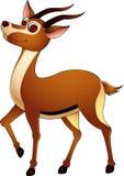 Fumetto sveglio del gazelle Fotografia Stock