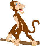 Fumetto sveglio della scimmia Fotografie Stock