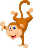 Fumetto sveglio della scimmia che sta in sua mano Fotografia Stock