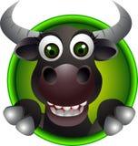 Fumetto sveglio della testa del toro Immagini Stock Libere da Diritti