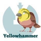 Fumetto Yellowhammer di ABC Fotografia Stock Libera da Diritti