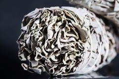 Fumigation de combustion lente de sauge blanche d'apiana cérémonieux de salvia Images stock