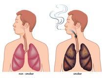 Fumo ilustração stock