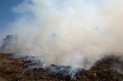 Fumo, após uma queimadura prescrita do incêndio Fotos de Stock Royalty Free