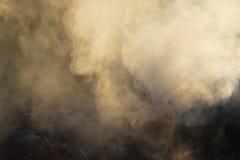 Fumo branco do fogo onde as placas e a serragem molhadas se encontram Fotografia de Stock