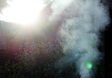 Fumo branco do fogo onde as placas e a serragem molhadas se encontram Imagens de Stock