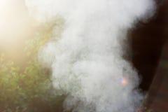 Fumo branco do fogo onde as placas e a serragem molhadas se encontram Foto de Stock