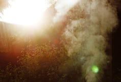 Fumo branco do fogo onde as placas e a serragem molhadas se encontram Imagens de Stock Royalty Free