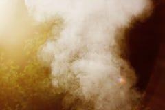 Fumo branco do fogo onde as placas e a serragem molhadas se encontram Imagem de Stock Royalty Free