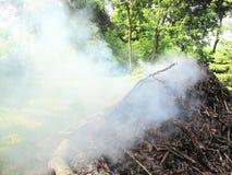 Fumo da un fuoco del campo Fotografia Stock