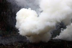 Fumo das bombas de fumo Fotografia de Stock