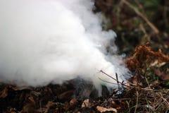 Fumo das folhas Foto de Stock
