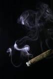Fumo del sigaro fotografia stock libera da diritti