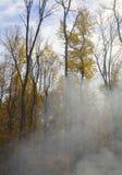 Fumo di autunno immagini stock