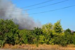 Fumo di fuoco Immagine Stock