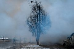 Fumo dopo fuoco con l'albero nero Immagine Stock Libera da Diritti
