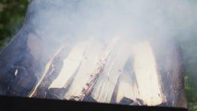 Fumo duro in Braizer stock footage