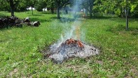 Fumo e fuoco durante dalla combustione dello spreco del giardino video d archivio