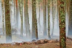 Fumo e fuoco nel legno Fotografie Stock Libere da Diritti