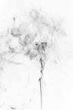 Fumo nero astratto Fotografia Stock
