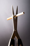 Fumo parado Fotografia de Stock Royalty Free