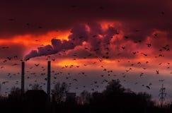 Fumo pesado do central eléctrica de carvão imagens de stock royalty free