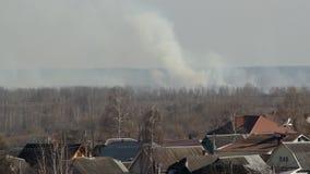 Fumo pesante da incendio forestale e da erba asciutta bruciante sull'orizzonte in primavera, ecologia archivi video