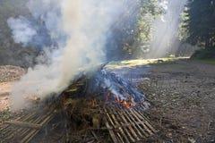 Fumo sopra fuoco Immagini Stock